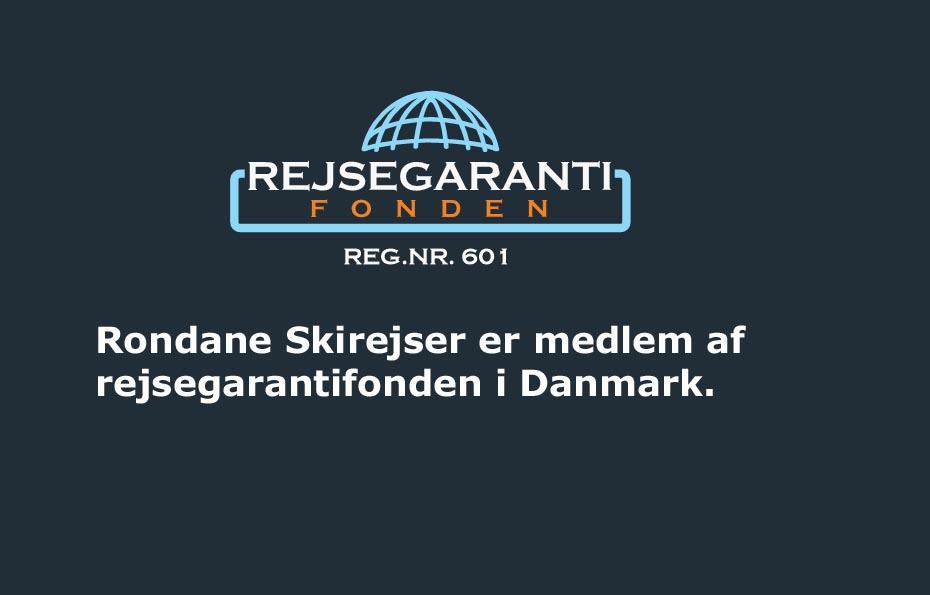 registreringsnummer danske bank